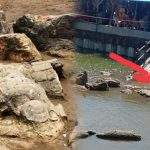 Cerita Batu Malin Kundang di Padang ok